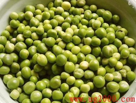 豌豆炒肉片时,豌豆到底要不要焯水,估计八成人没弄明白